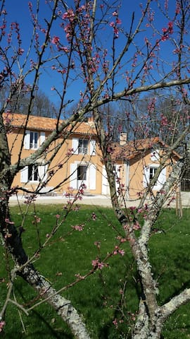 maison pleine nature bois etangs