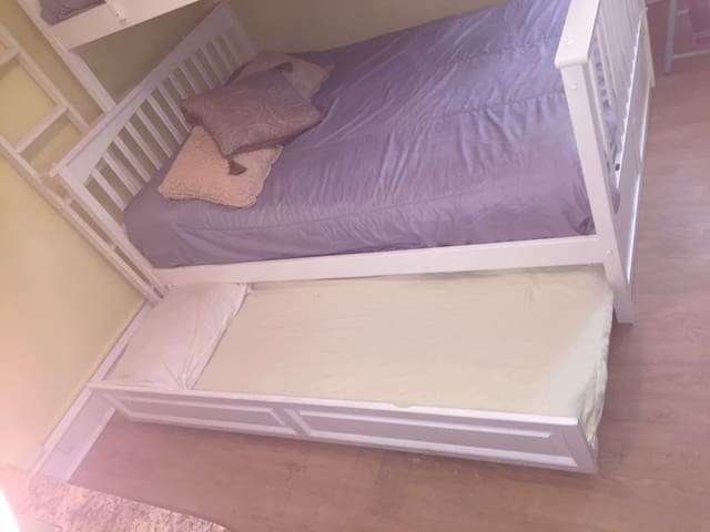pull out bed (twin size)