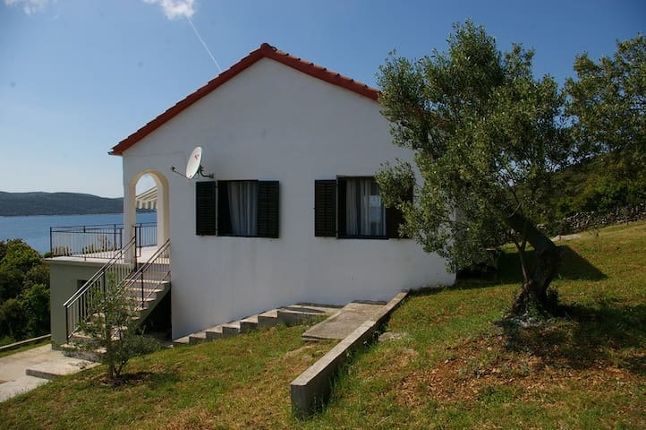 House on island Rivanj/CROATIA
