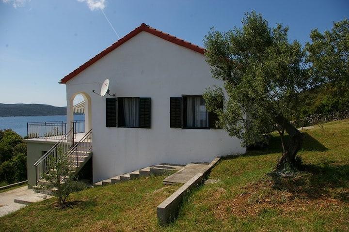 House on island Rivanj/CROATIA