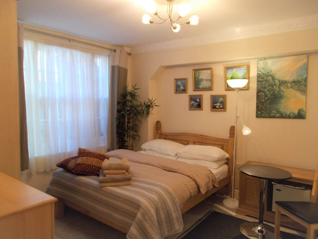 Art Home Double EnSuite room for rent in Pimliico