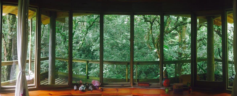 La casa del Bosque Habitación king - Xalapa - Huis