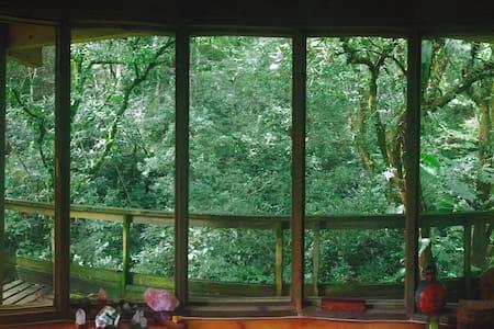 La casa del Bosque Habitación king - Xalapa
