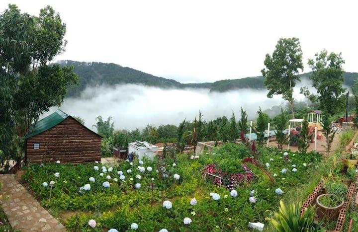Hoang Gia Trang, The Rustic Garden - Blue Room