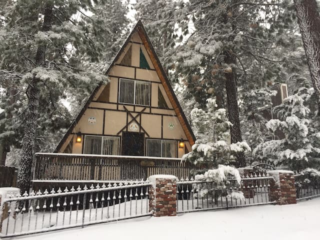 """Get """"funky"""" in the forest... - Wrightwood"""