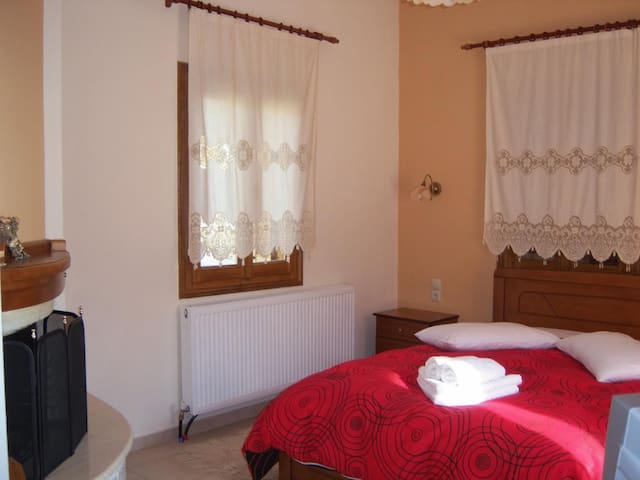 Double or Twin Hotel Room with Fireplace in Pelion