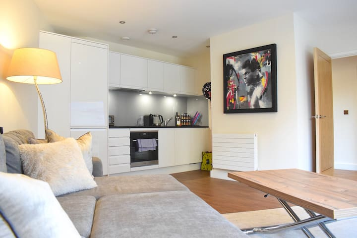 Modern 1 Bed Flat in Hampstead/Belsize Park