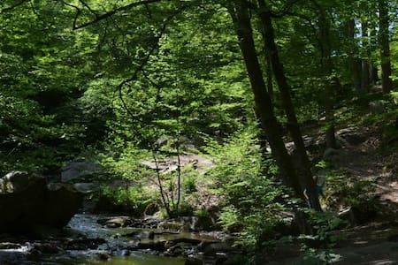 Chambre en vallée de chevreuse - Cernay-la-Ville