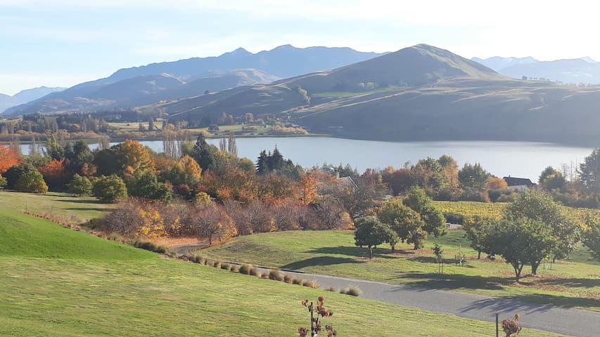 Luxury overlooking Spectacular Lake Hayes
