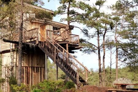 Villmarks Tårnet - TreeTop Fiddan