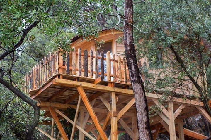 Cabane perchée spa privatif