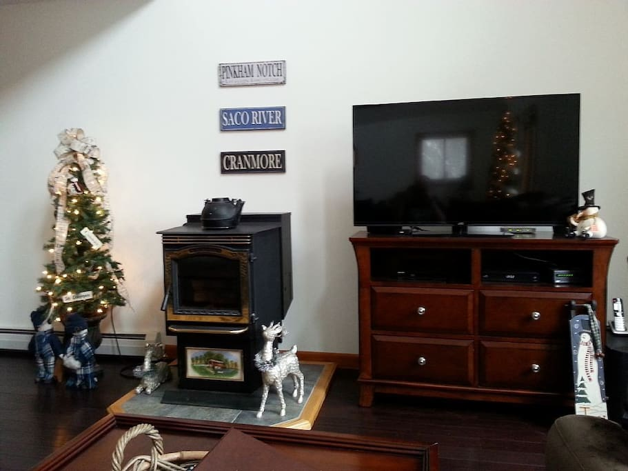 Pellet Stove & TV