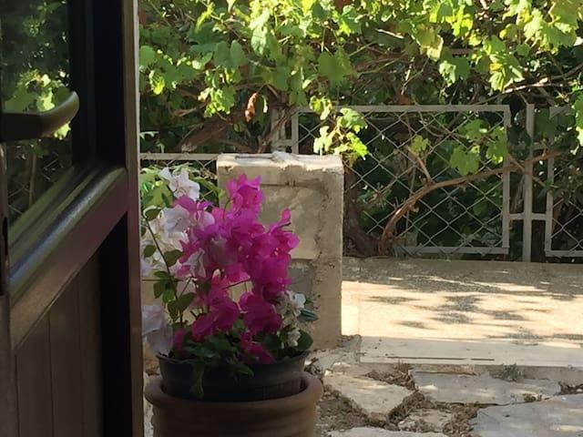 Stüdyonun müstakil girişi, kendine ait bahçe girişidir. Doğa bitkiler ile çevrilidir.