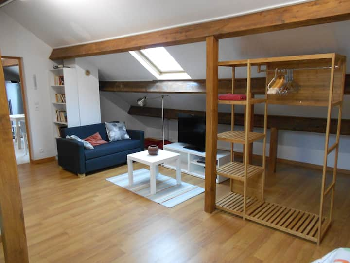 Large independent apartment on the 1st floor House