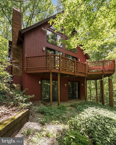 Secluded house in the woods, but close to it all.