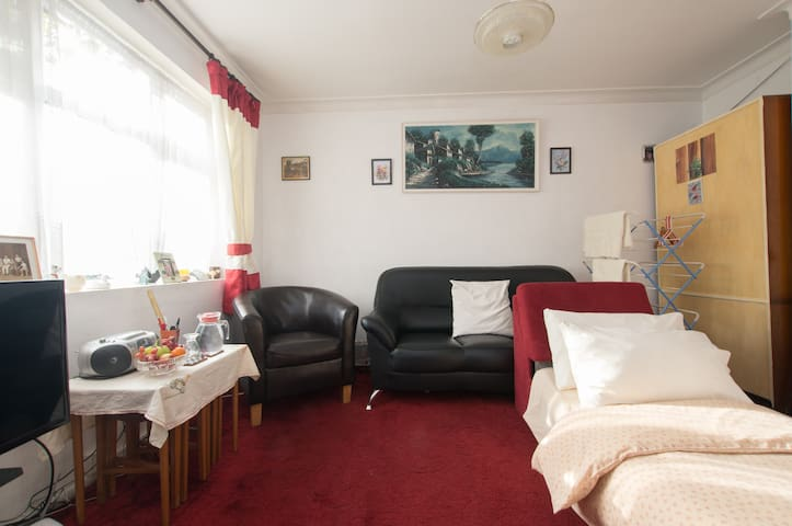 Leyton East London bright sunny large room-1 guest