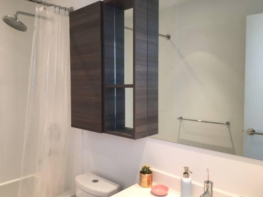 bathroom with rainfall shower head.