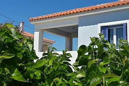Wonderful Blue Seaside House