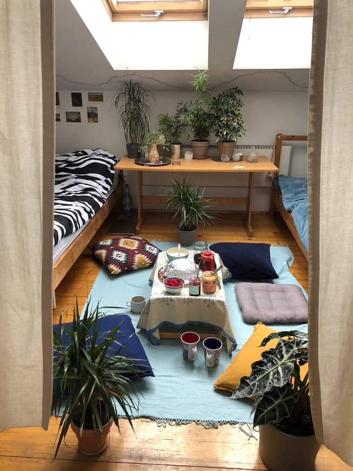Cozy room in the center of Cracow