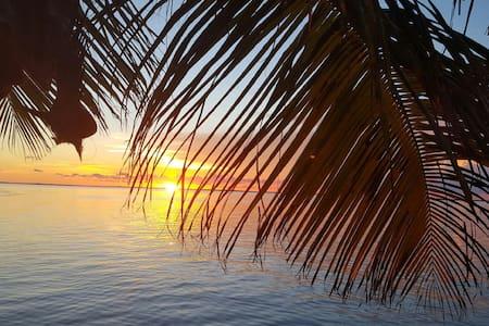 Key Largo Sunset Cottage, Relax in Paradise. - Key Largo - Bungalow