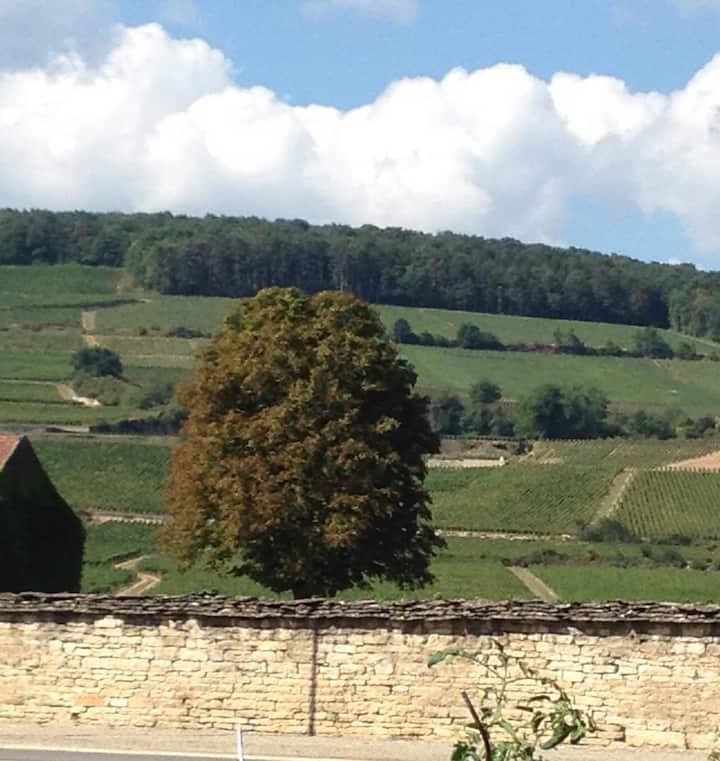"""""""Chez Armand"""" maison sur un Domaine viticole !"""