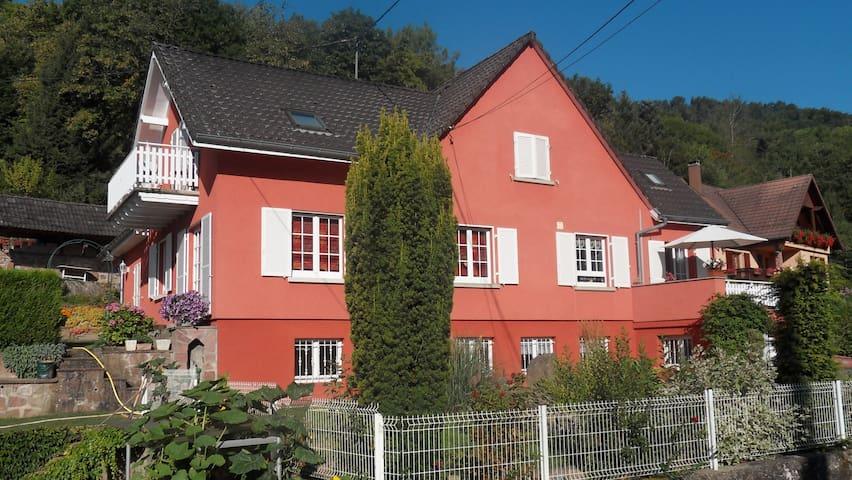 "Gite ""AU FIL DE L'EAU"" 45m² au calme. - Gunsbach - House"