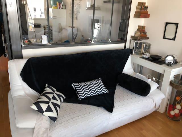 Canapé n°1
