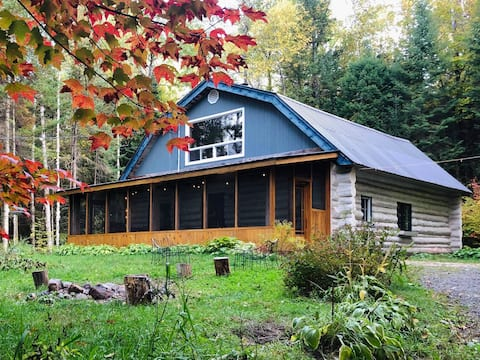 Beautiful log house with big veranda in the forest