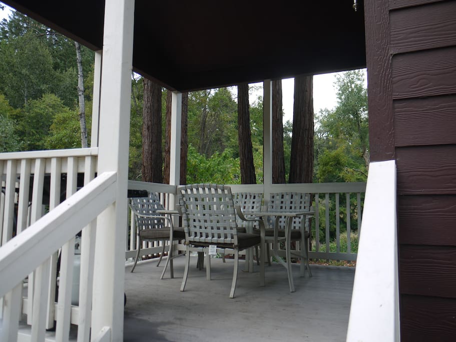 Back porch with table & BBQ. River behind the trees in the photo.