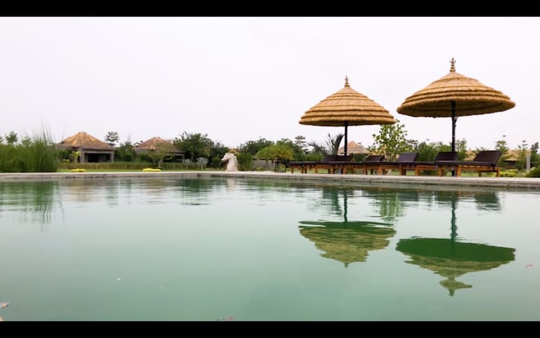 Garden View Safari camp in Pali Rajasthan