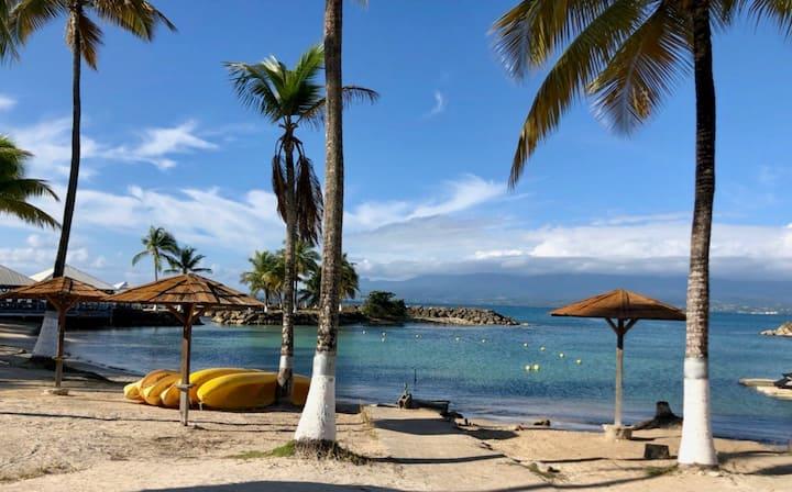 Magnifique T2 vue mer et accès plage à pied