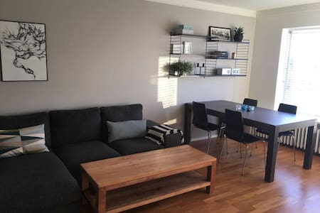 Nice apartment in city center - 雷克雅維克(Reykjavík) - 公寓