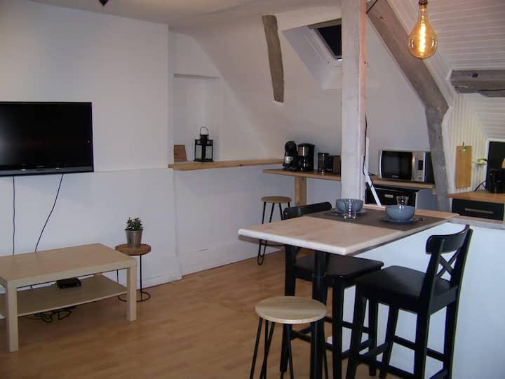 Rennes: studio rénové proche commerces et bus.