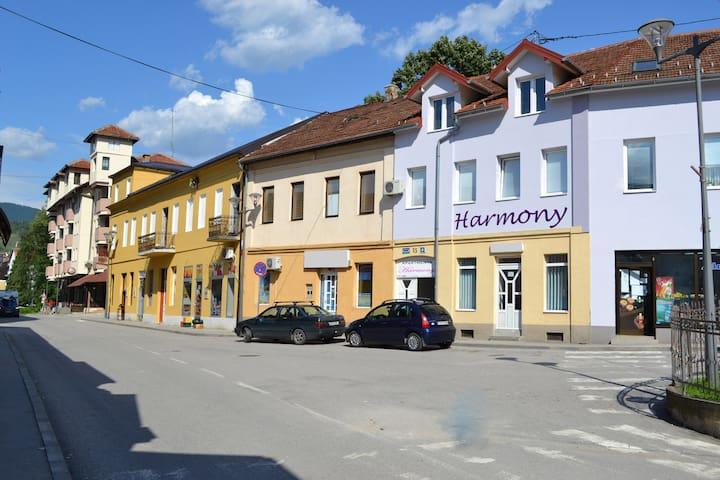 Harmony apartment 2