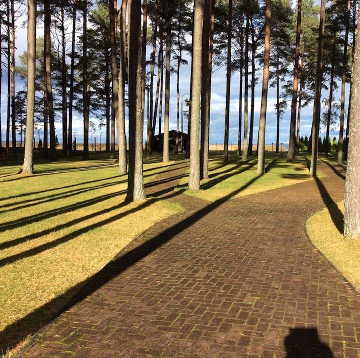 Уютный домик на первой линии Псковского озера