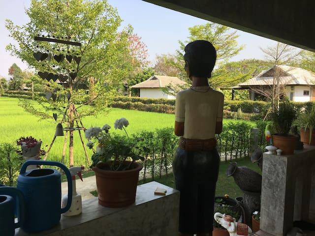 Im Reisfeld - Tambon Choeng Doi - Huis