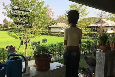 Im Reisfeld - Tambon Choeng Doi - Talo