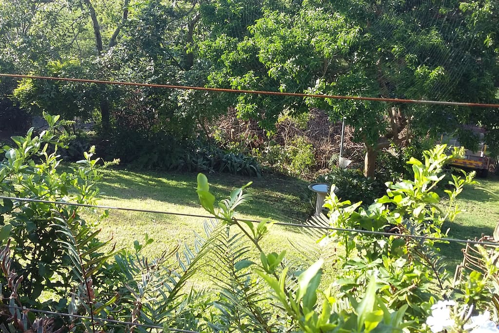 View from Patio, overlooking garden, good for spotting our abundant birdlife