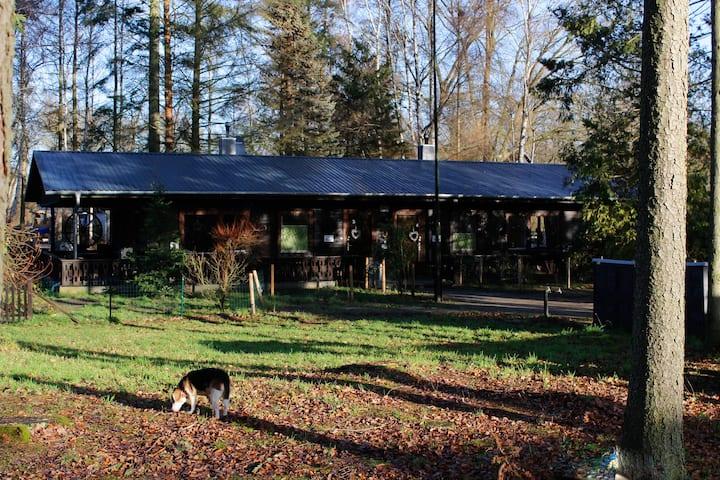 Ferienhaus-Pannier IV Urlaub auch mit Kind + Hund