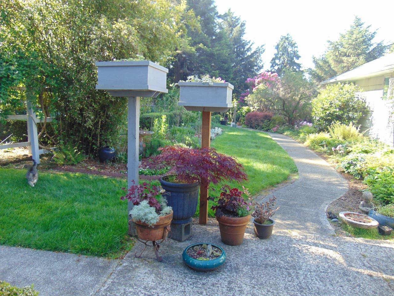Pat's Garden Retreat