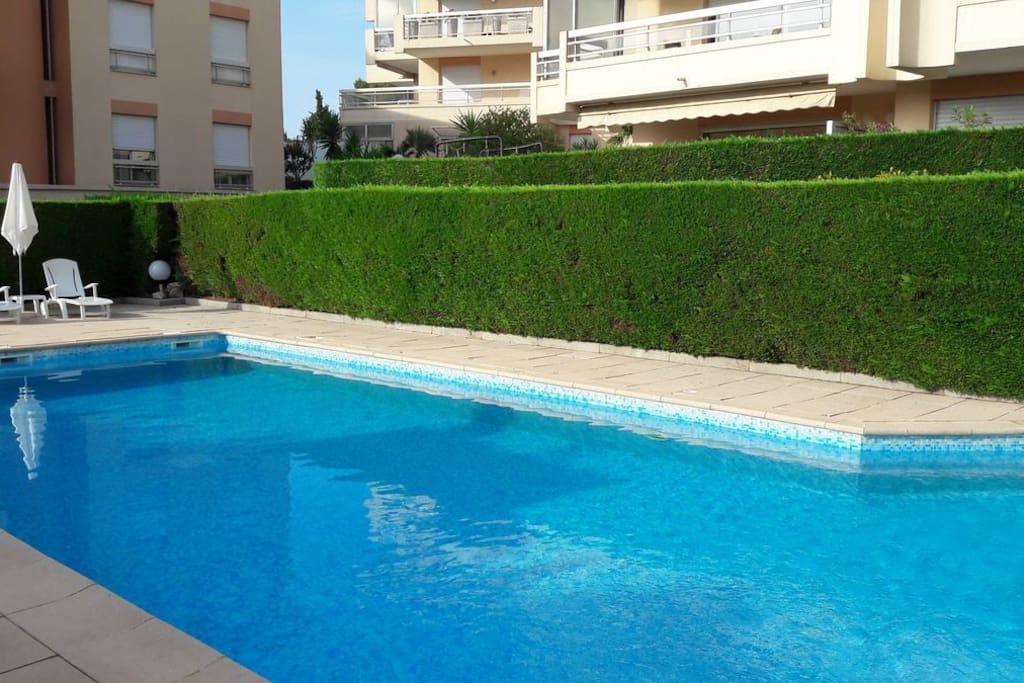 Large size swimming pool