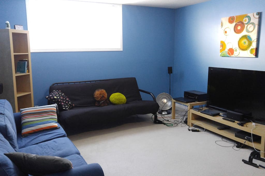 Living room (Basement)