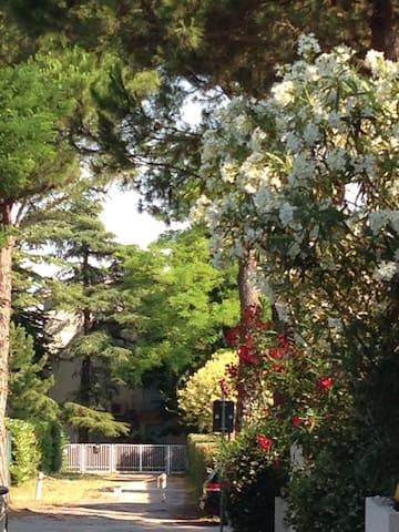 Jesolo Pineta, sea, nature and tranquility