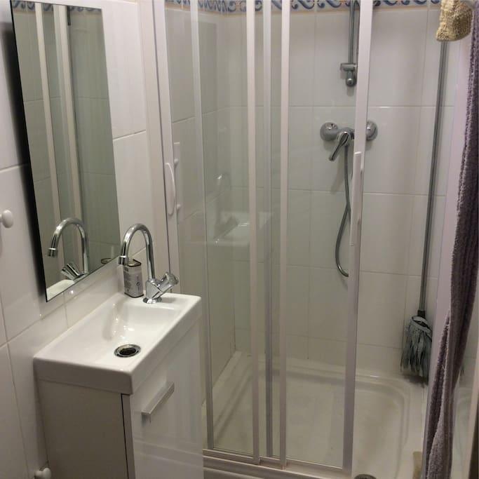 petite salle eau-douche attenante chambre et privée
