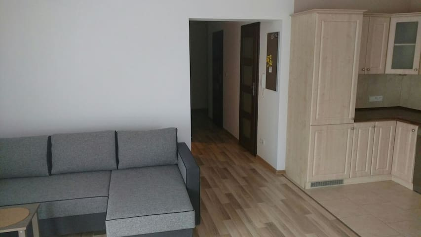 Exceptional clean&big room close enough to Center! - Kraków - Townhouse