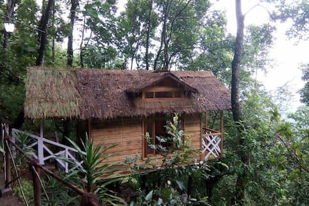 Treehouse in the midst of Himalayas - Bustee - Gangtok - 树屋