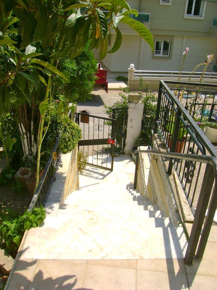Der Eingang zum Grundstück / the Entrance :)