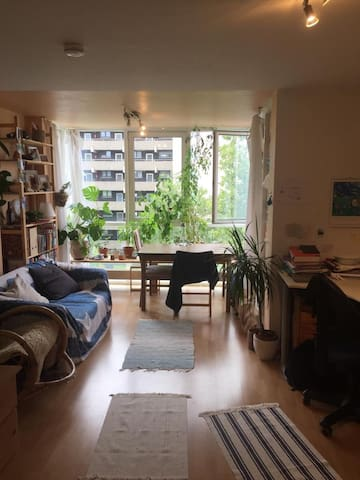 Large room in fantastic location :)