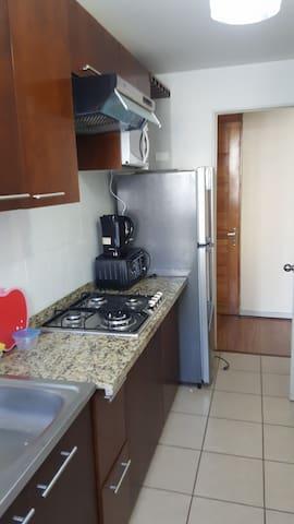 Departamento Amoblado por dia, semana, mes. - Concepción, Región del Bío Bío, CL - Appartement