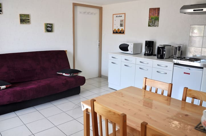 Appartement type F1 - Saint-Léger-lès-Paray - Apartment